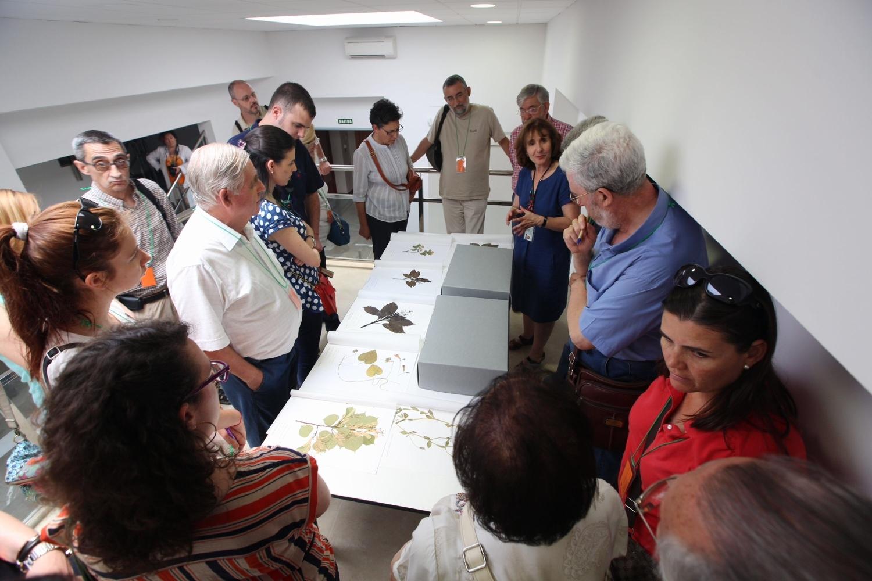 La Alhambra organiza visitas guiadas gratuitas con motivo del Día Internacional de los Archivos