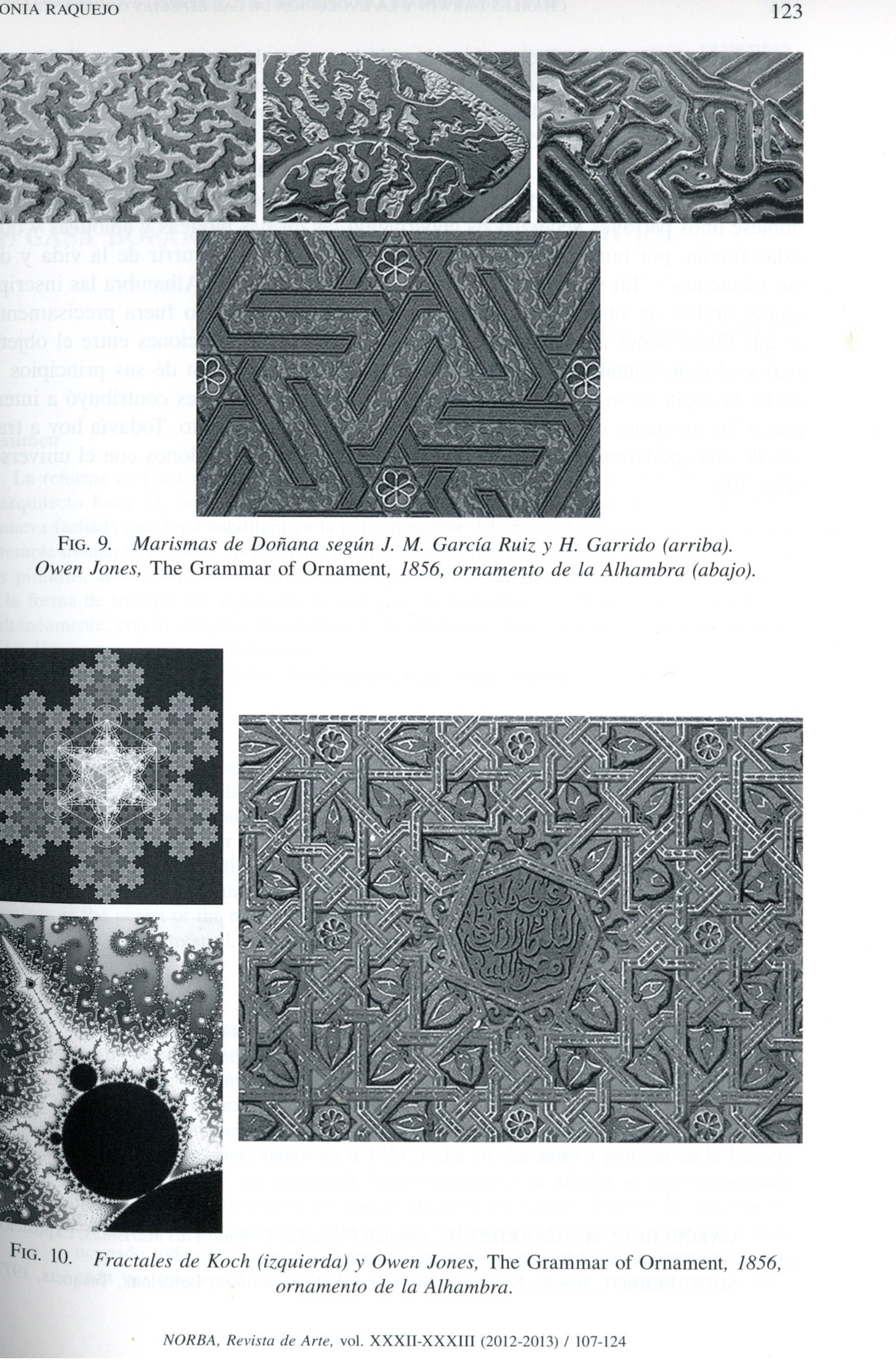 Charles Darwin and the evolution of ornamental species in the Alhambra of Owen Jones / Tonia Raquejo
