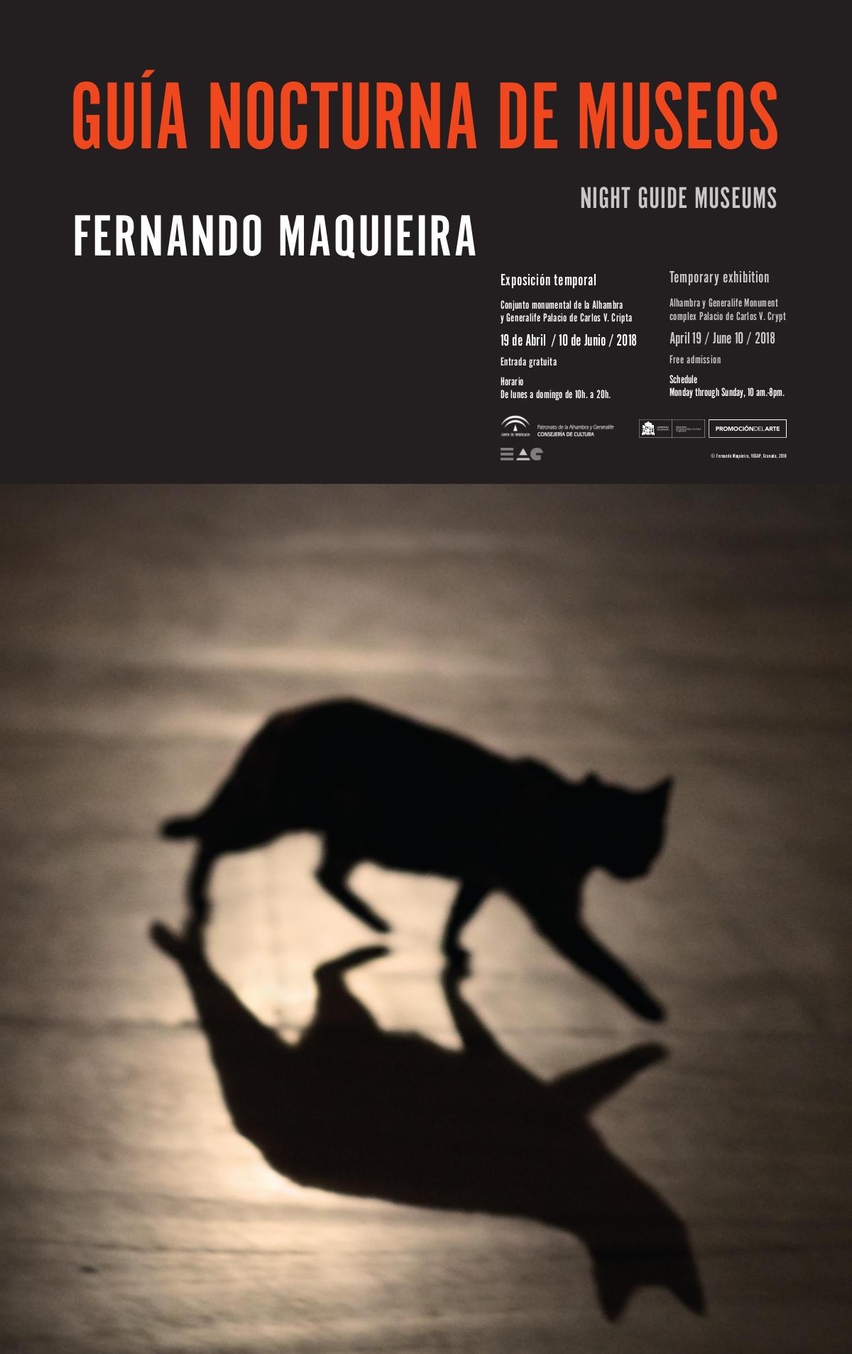 """Cartel de la exposición """"Exposiciones temporales: Guía nocturna de museos. Fernando Maquieira"""""""