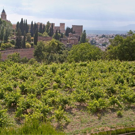 Alhambra por fuera
