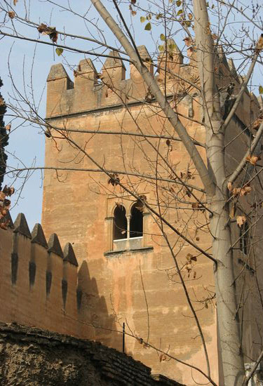 Tower of the pointed Embattlements
