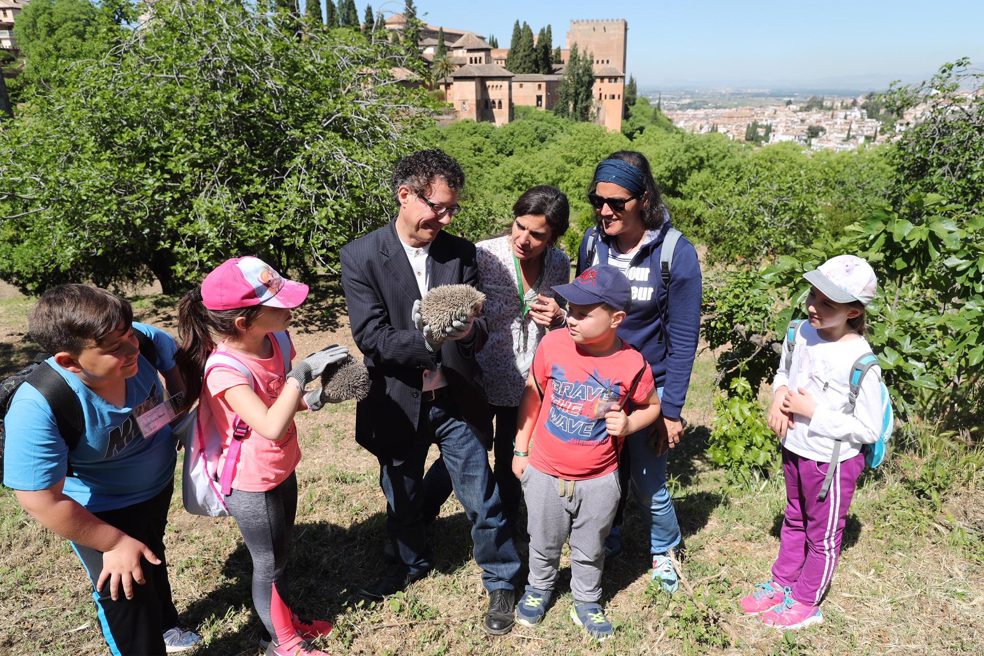 """La Alhambra consolida su colonia de erizos en las  Huertas del Generalife con la """"suelta"""" de 4 ejemplares"""