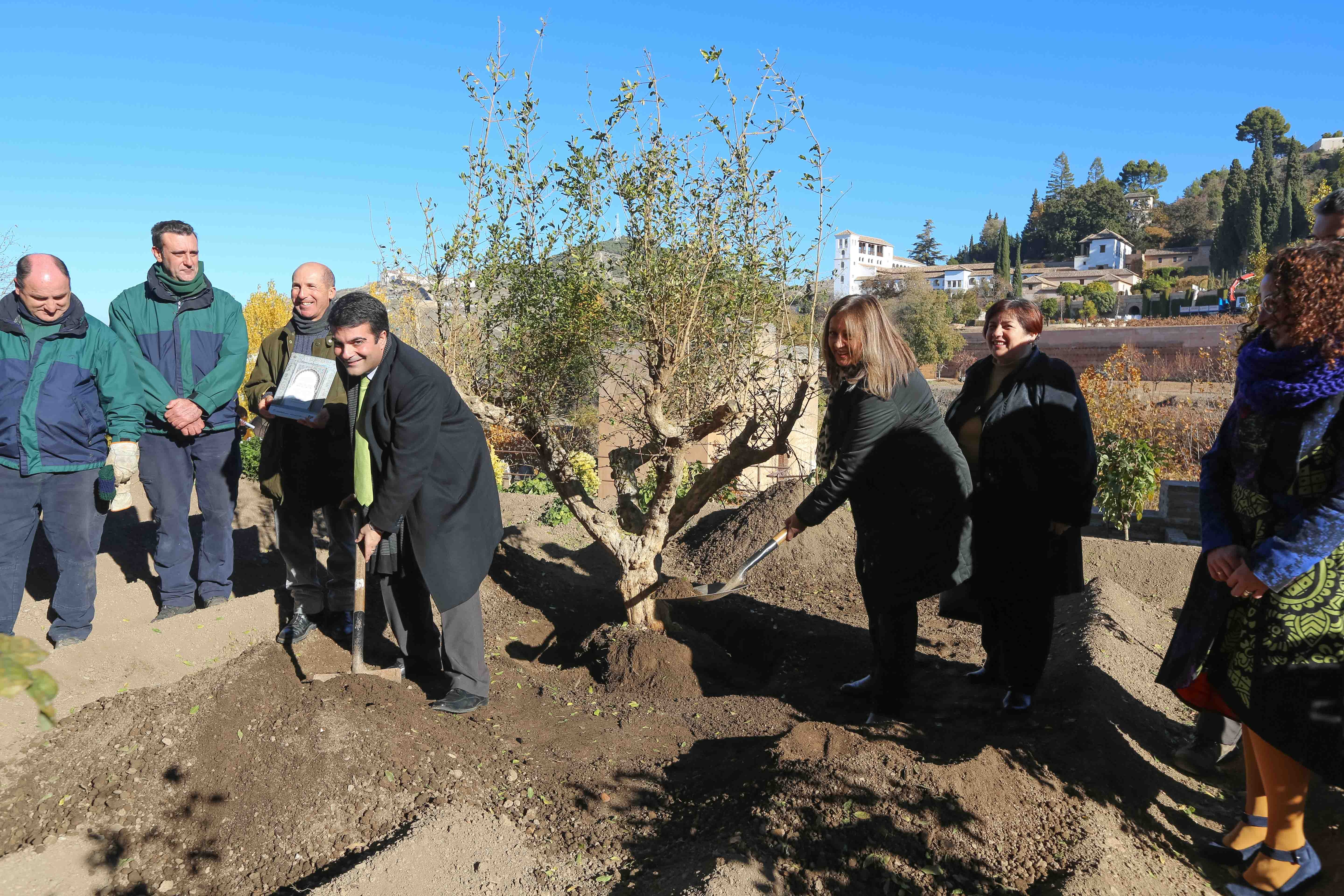 A pomegranate tree is planted in the Alhambra in memory of the Loja poet Ibn al-Khatib
