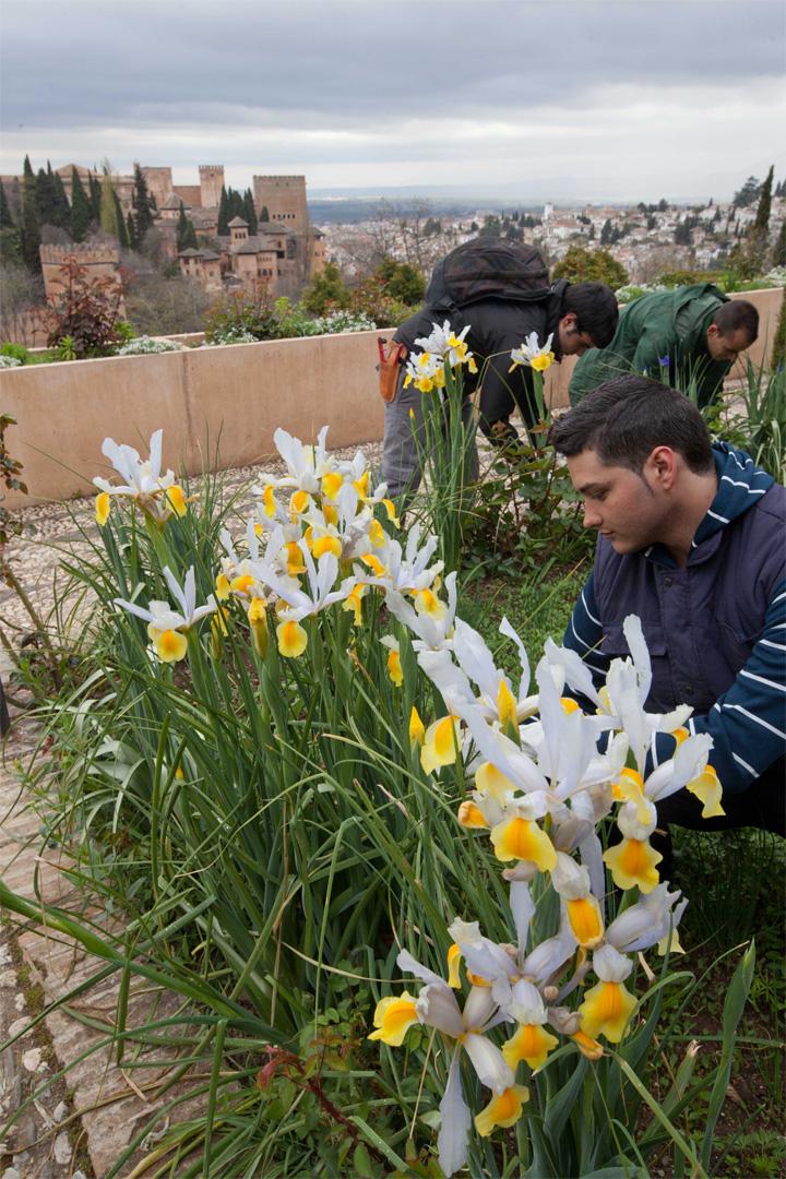 La Alhambra consolida su apuesta por el empleo público con la incorporación de 44 nuevos puestos de trabajo