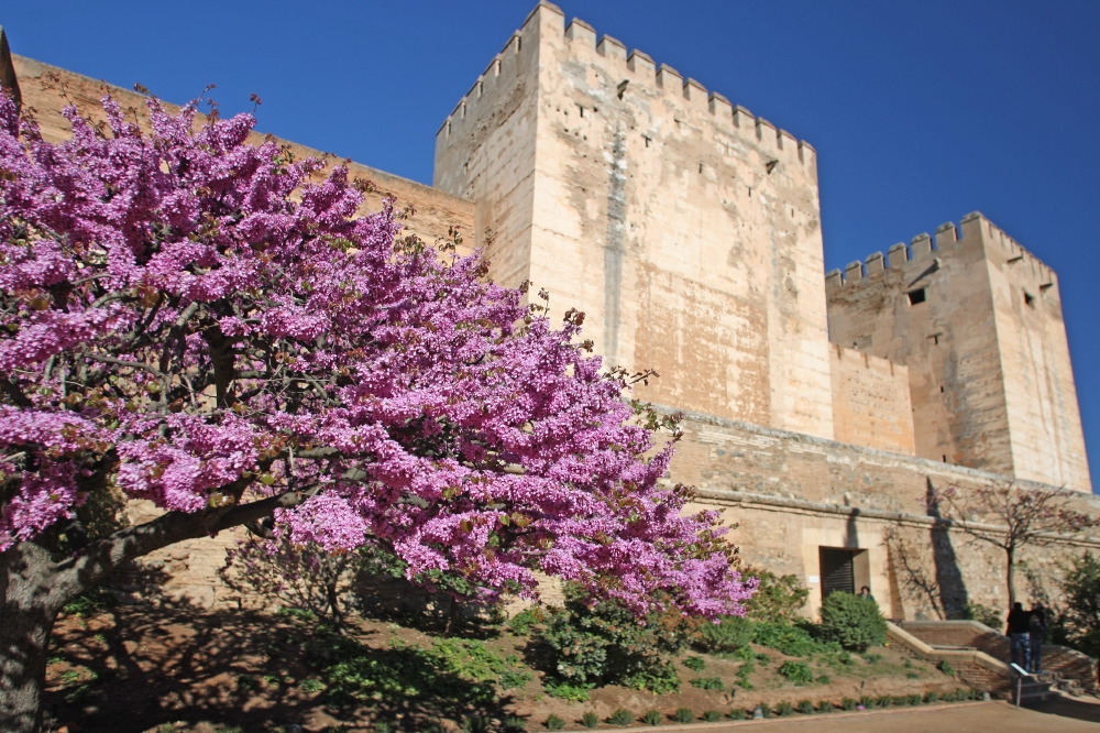 The Alhambra extends its opening hours