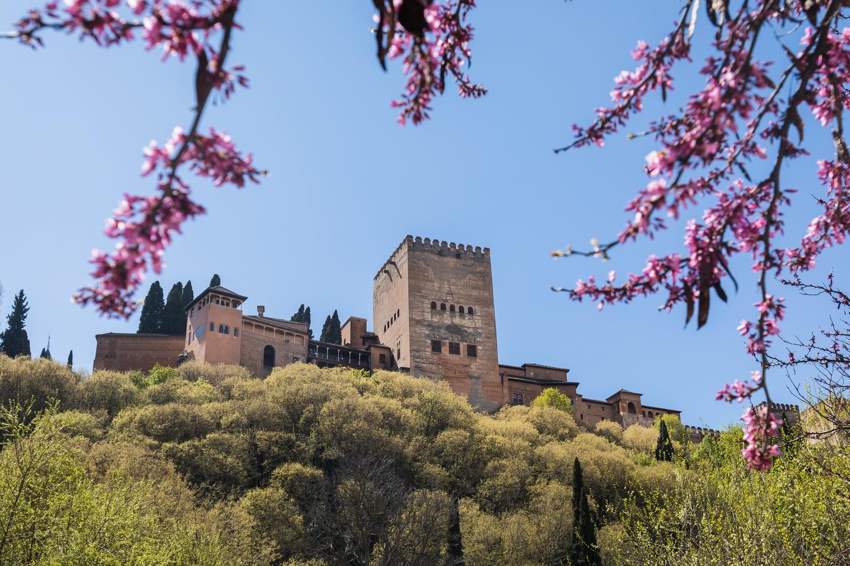 Torre de Comares: la jaima de piedra