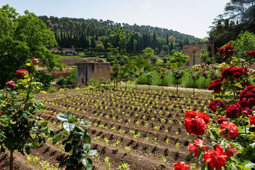 Paratas del Paseo de las Torres: las huertas de la Alhambra